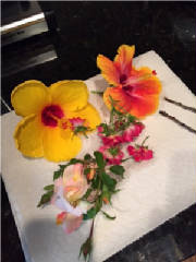 flowers_more/Kristins_flowers_from_essence_making_Sept5_2015.JPG